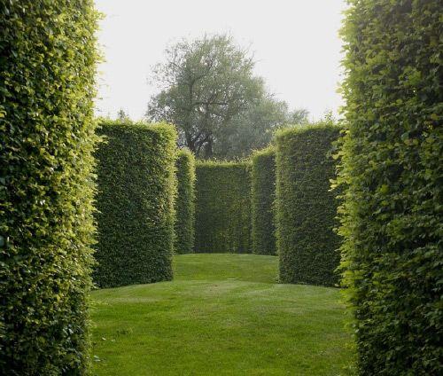 Topiary garden in Belgium, designed by Piet Blanckaert.