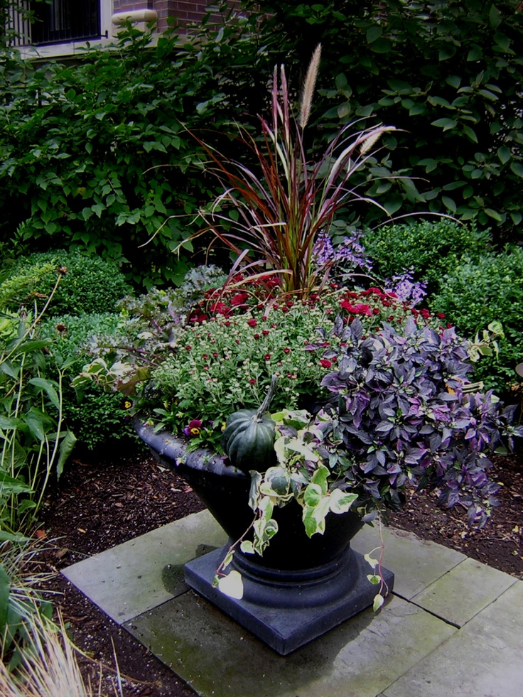 17 best images about fall and winter container garden ideas on pinterest gardens fall - Winter container garden ideas ...