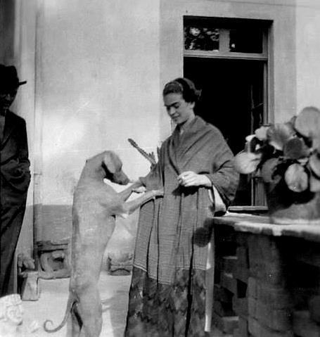 ©Tina Modotti. Frida Kahlo amb gos