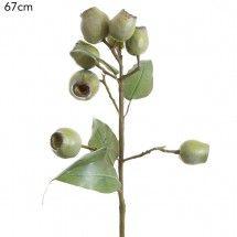 may have to sub poppy pods with eucalyptus gumnut spray green