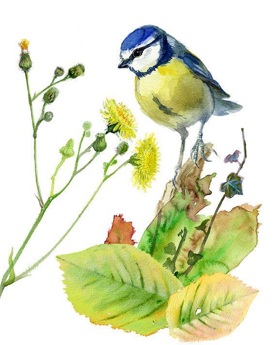 Птица падение печать, gicleeFall печати плакатов с птицей Синица, цифровой коллаж из оригинальных акварельных картин VerbruggeWaterolor
