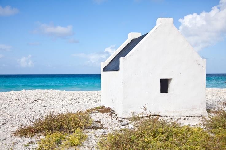 34 best images about bonaire caribbean on pinterest - The dive hut bonaire ...