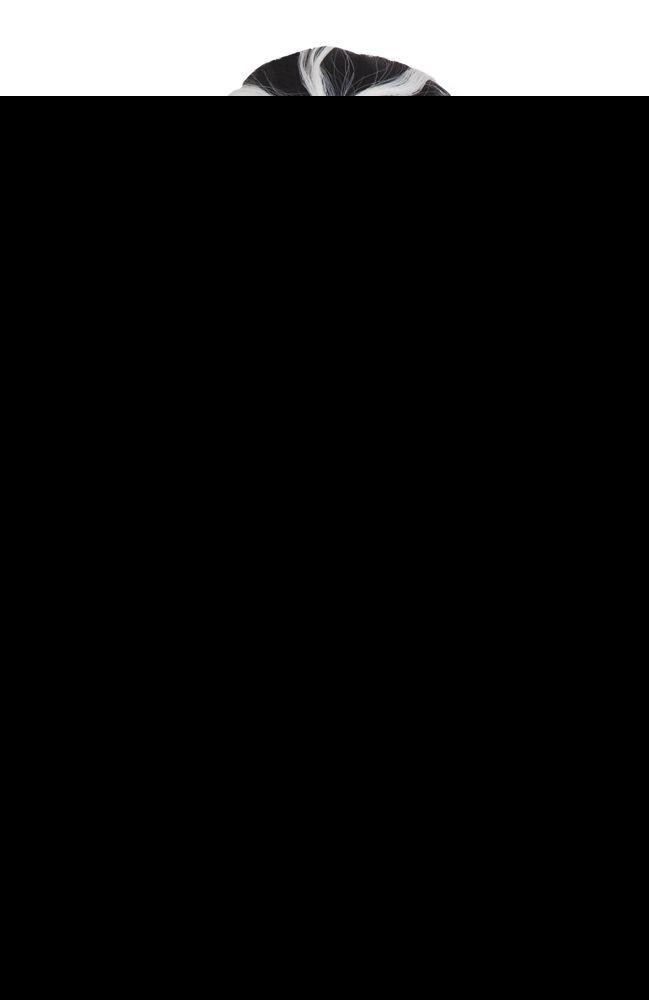 Hämähäkkiperuukki