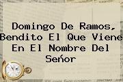 http://tecnoautos.com/wp-content/uploads/imagenes/tendencias/thumbs/domingo-de-ramos-bendito-el-que-viene-en-el-nombre-del-senor.jpg Domingo de Ramos. Domingo de Ramos, Bendito el que viene en el nombre del Señor, Enlaces, Imágenes, Videos y Tweets - http://tecnoautos.com/actualidad/domingo-de-ramos-domingo-de-ramos-bendito-el-que-viene-en-el-nombre-del-senor/