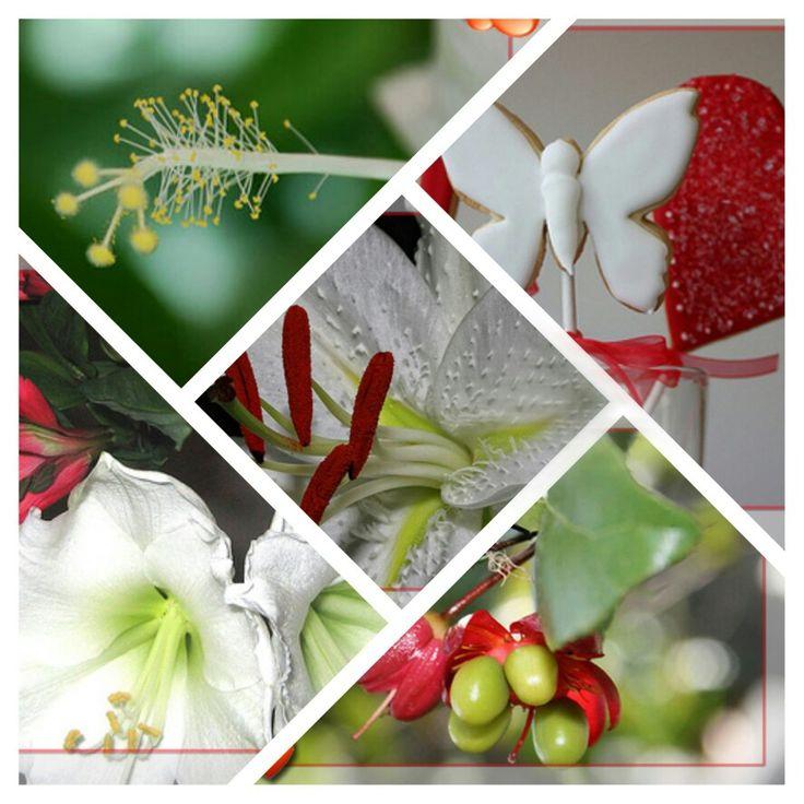 Nemzeti színű virágok