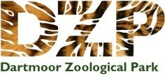 """Dartmoor Zoo in Devon - The zoo """"We Bought a Zoo"""" was based off of"""