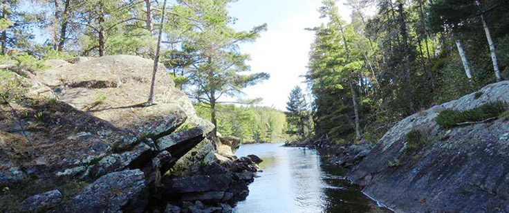 Making Memories on the Clearwater/Pipestone Chain of Lakes – MidWest Outdoors