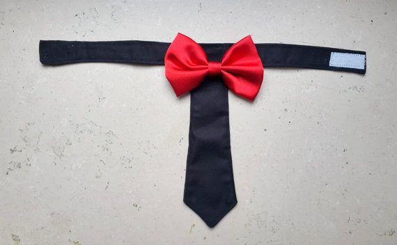 Perro corbata gato corbata corbata de perro del Collar por PinkBau