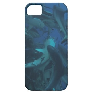 Protect your iPhone 5 with a customizable Barely There Case-Mate brand case from Zazzle. This form-fitting case covers the back and corners of your iPhone 5 with an impact resistant, flexible plastic shell, while still providing access to all ports and buttons. This iPhone 5 case shows a shark feeding frenzy at Australia's Osprey reef.