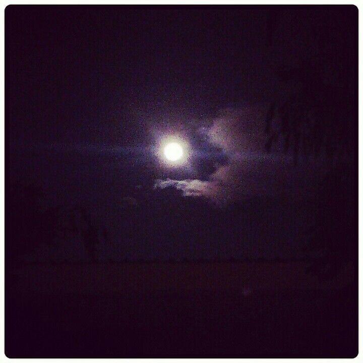 Noche  Luna...