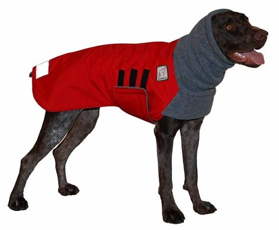 GERMAN SHORTHAIRED POINTER  Winter Dog Coat by VoyagersK9Apparel, $78.00