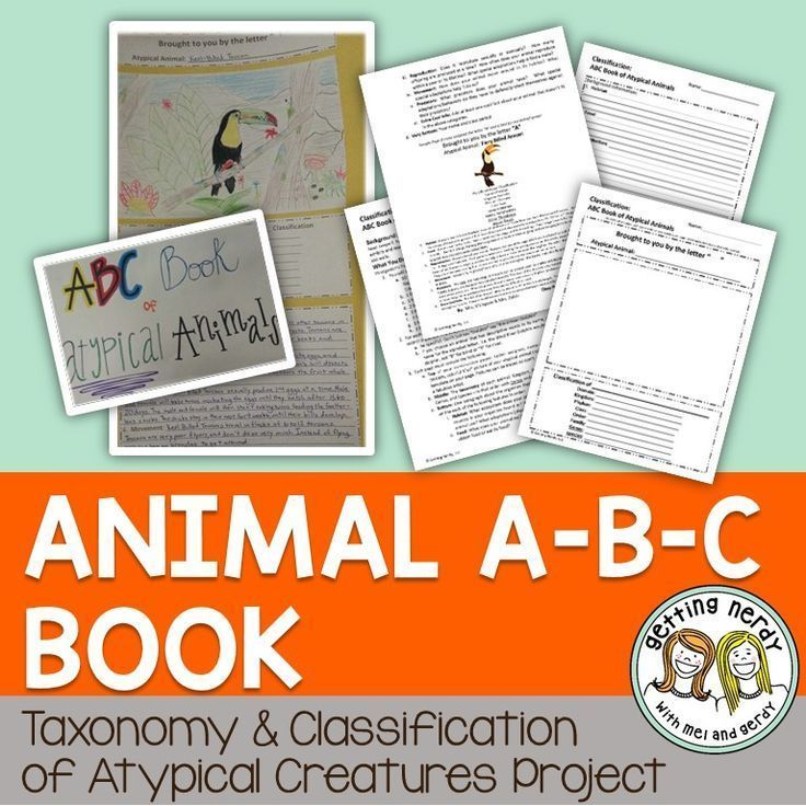 Classification group project for secondary grades - atypical book of the animal kingdom