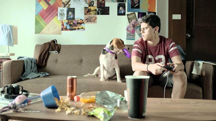 Viber India TV Ad 35 Sec #GoodVibes