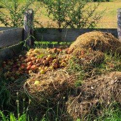 W najprostszej postaci, kompost możemy tworzyć w pryzmie. Układamy wóczas wszystkie odpady (liście, gałązki, resztki jedzenia itp.) warstwowo. Tworzenie kompostu będzie znacznie szybsze, gdy masa będzie powstawała w kompostowniku. O tym, jak wybrać kompostownik, piszemy na naszym blogu: zapraszamy.