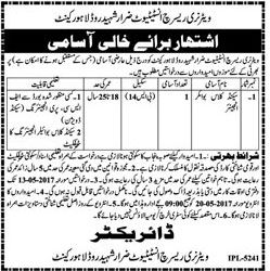 best ideas about boiler engineer hvac prices jobs for boiler engineer in veterinary research institute zarar