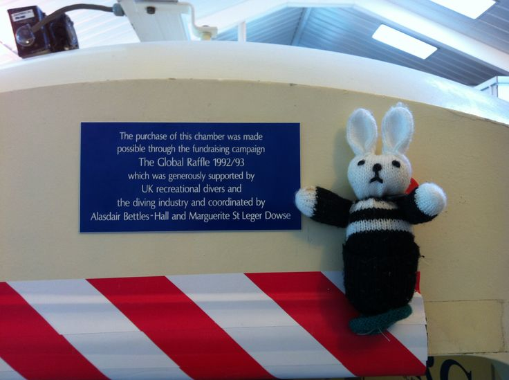Barry the Hyperbaric Bunny is proud to show his appreciation to all those who helped to fund our biggest hyperbaric chamber.