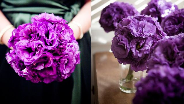I def want some of these in my bouquets  Purple Lisianthus