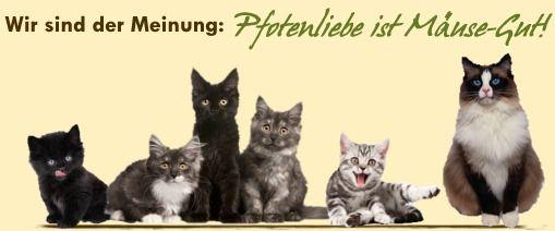 Hochwertige Katzennahrung, gesunde Hundenahrung - Hochwertiges gesundes Katzenfutter!