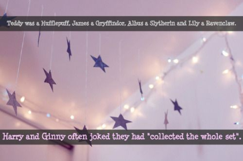 "Teddy was a Hufflepuff, James a Gryffindor, Albus a Slytherin and Lily a Ravenclaw. Harry and Ginny often joked they had ""collected the whole set"". Submitted by: anon"