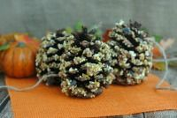 These homemade pine cone bird feeders are one of my favorite easy fall crafts using pine cones. Make them today!.