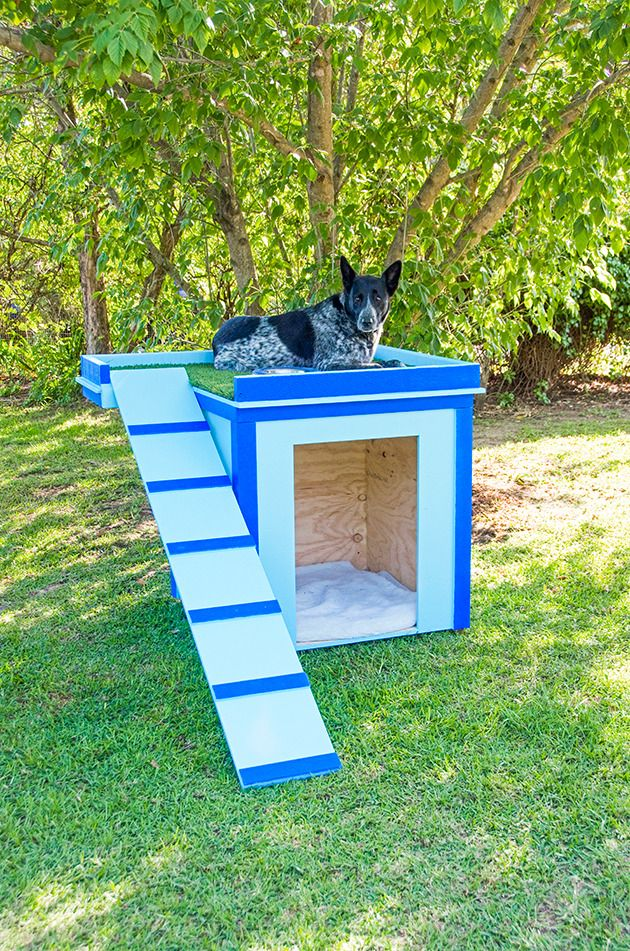 How to make a dog house: Ramp it up to a new level with this snazzy pooch palace, complete with sundeck!