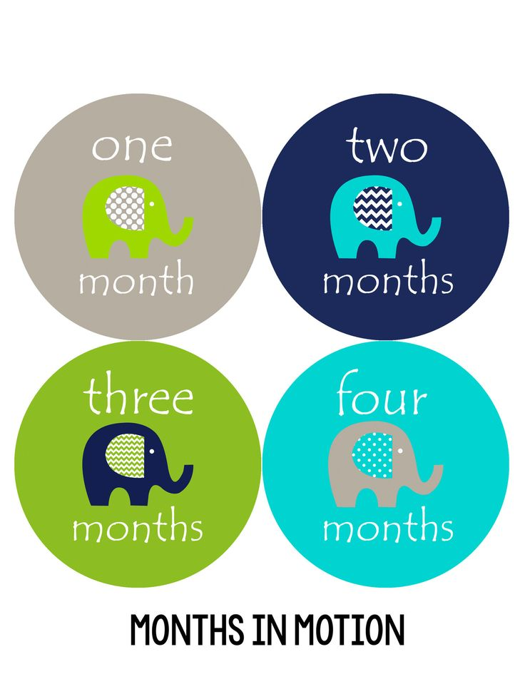 Baby Boy Monthly Baby Stickers Style #151