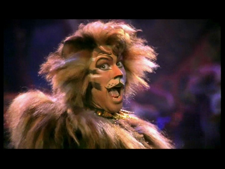 17 best images about rum tum tugger on pinterest