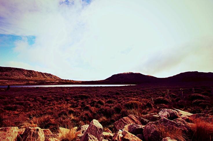 The highlands of Tasmania between Hobart and Davenport. Weather beaten, eerie and breathtaking.