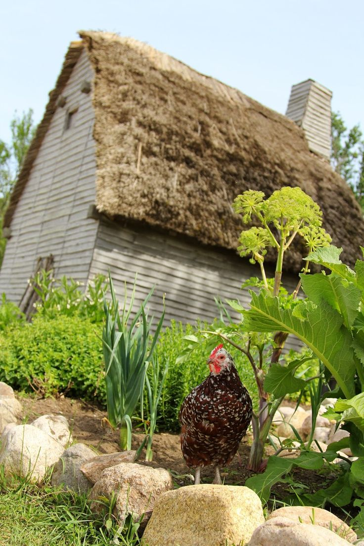 Plimoth Plantation In Plymouth Massachusetts New