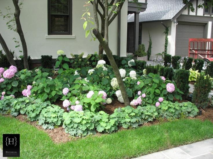 Gallery Photos : Historical Courtyards & Gardens.  Hydrangeas and Heucheras