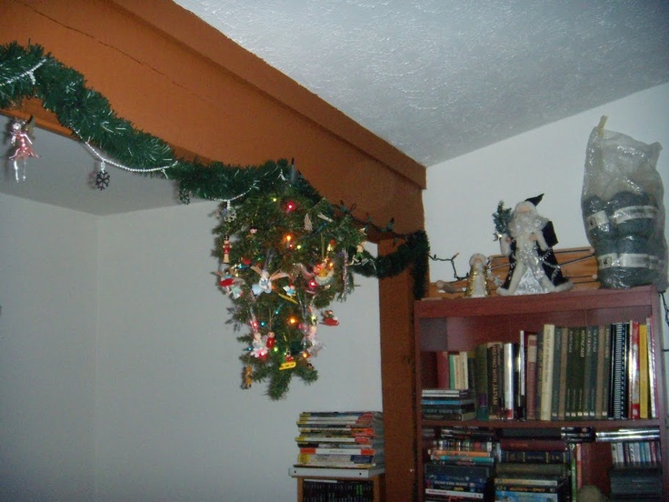 Upside-down Christmas tree. Keeps the cats from attacking it. :)