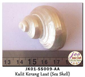 Kulit Kerang Untuk Craft,  Kerajinan Tangan & Hobby - JK01-SS009-AA