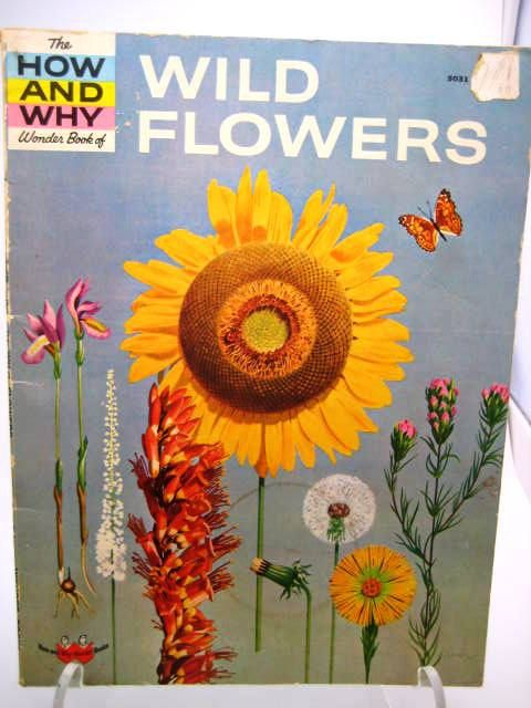 How and Why Wonder Book of Wild Flowers  Vintage by TooTooKute, $12.00: Vintage 1962, Flower Vintage, Wonder Books, Childhood Memories, Vintage Children, Flowers Vintage, Vintage Mood, Children Books, Wild Flowers