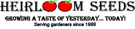 Heirloom Tomato Seeds - Over 100 Varieties of Heirloom Tomatoes: I ordered from this website for our garden last year. With the new baby we didn't get a chance to save seeds from our vegies to plant this spring...so we will need to buy more seeds!  We especially loved the haricot vert green beans, the cukes, the wildflowers, giant sunflowers and the cherry tomatoes!