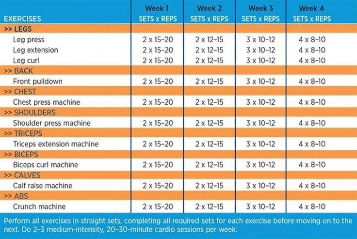 beginner workout sample chart