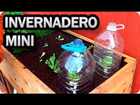 Como Hacer Mini Invernaderos Para Nuestras Plantas || La Huertina De Toni
