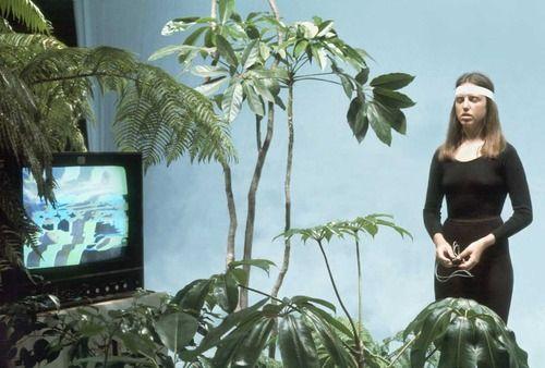 brainwave music, the secret life of plants, 1976