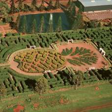 Dole Pineapple Plantation  Oahu  Hawaii  did this maze with my youngest daughter