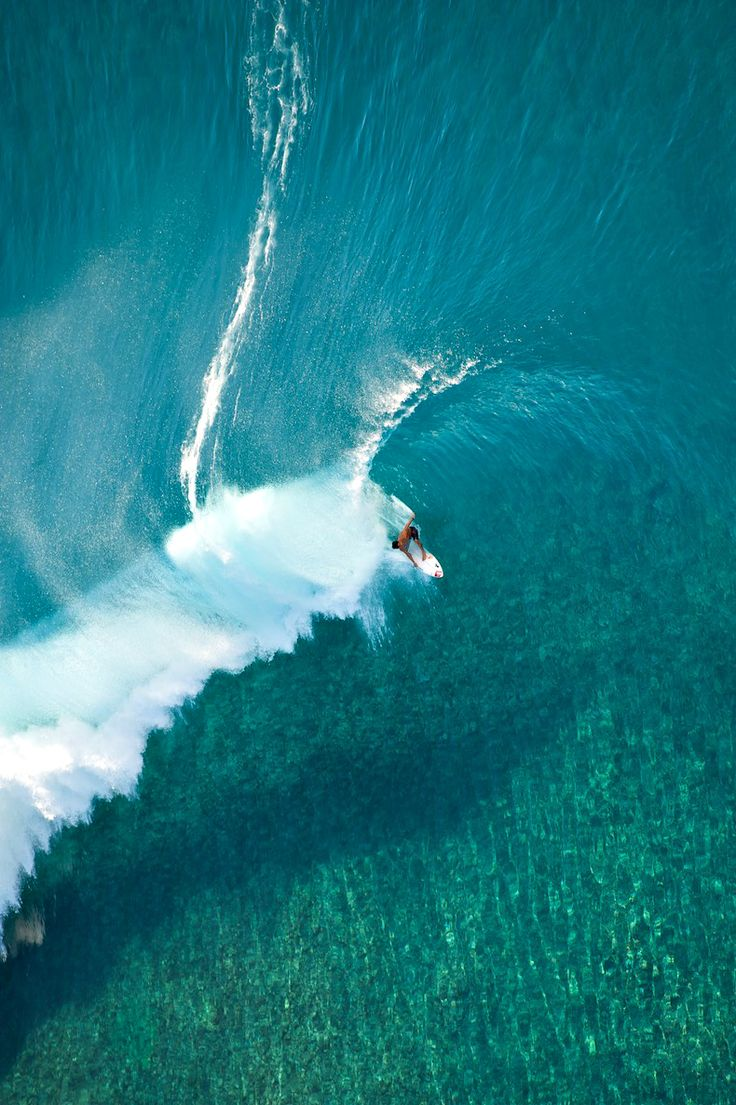 reef view through shallow Tahitian glass / Ph: Tim McKenna