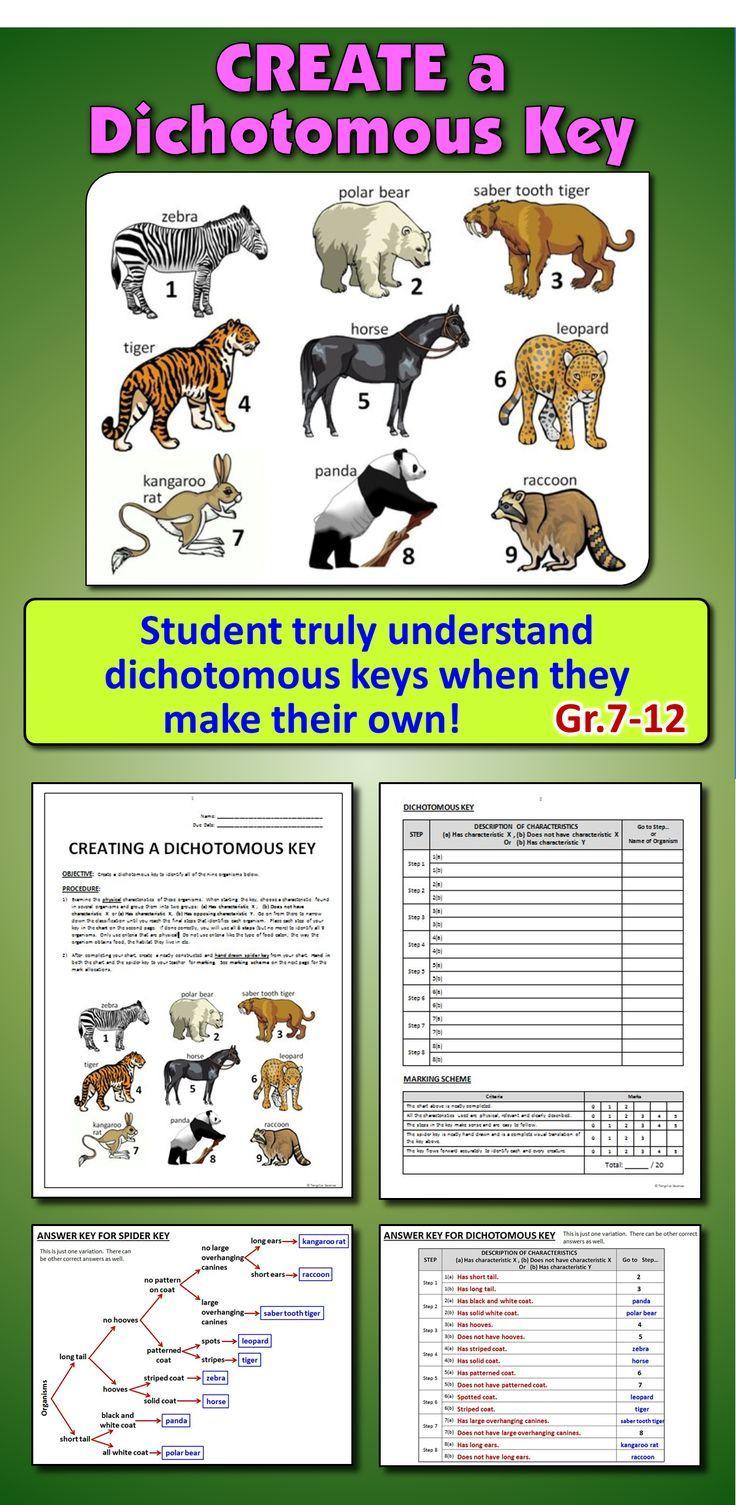 Wenn Sie Mochten Dass Die Schuler Dichotome Schlussel Wirklich Verstehen Sollten Sie Dass Dichotome Dichotomous Key Teaching Biology Science Education Fun dichotomous key worksheet pdf