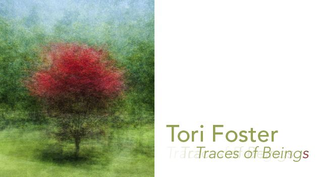 Tori Foster: Traces of Beings | SEPT 3 - OCT 22, 2016