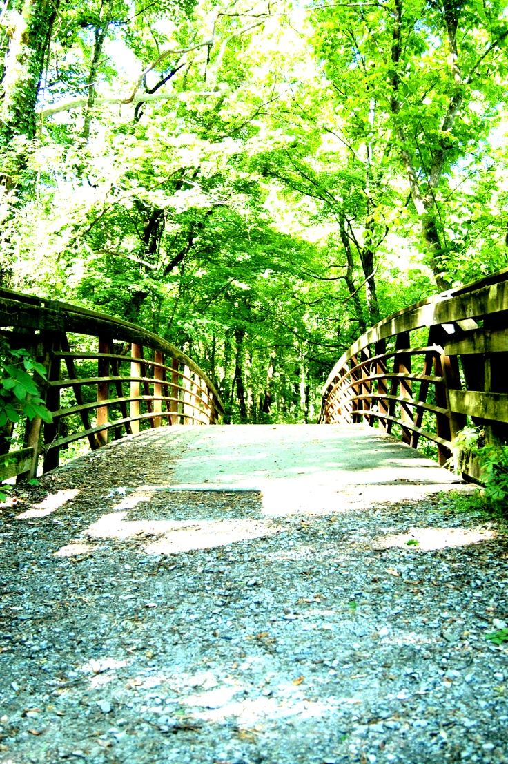 A walk in the park. Muscle Shoals Alabama.