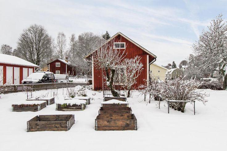 Den perfekta odlingsplatsen Idrottsgatan 9, Skillingaryd
