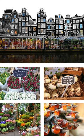 Bloemenmarkt #amsterdam #specialties #accorcityguide The nearest Accor hotel : Sofitel The Grand Hotel Amsterdam