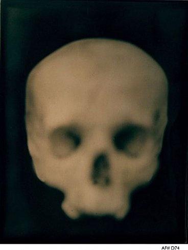 Adam Fuss, Daguerreotype