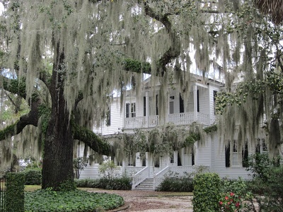 Country Weekend: moss, Spanish and otherwise.  Nothing says Southern more than a beautiful Southern Plantation House with willows covered in Spanish Moss.
