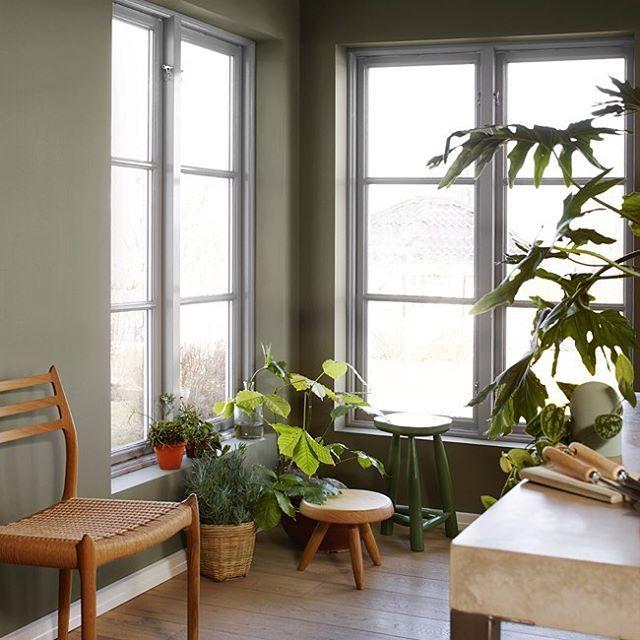 LADY 8469 Green Leaf er en grønn mellomtone. Sett den gjerne sammen med den lysere Green Harmony for å understreke det grønne innslaget. Sammen med farger som 394 Varmgrå, og 1376 Frostrøyk eller de greige 10341Kalk og 10342 Kalkgrå blir denne utrolig lekker. Fungerer godt til Klassisk Hvit, Letthet, Egghvit og Bomull. #ladywonderwall #ladygreenleaf #nyttfargekart #jotunlady #jotun #grønnfarger #trender #interior #inspiration