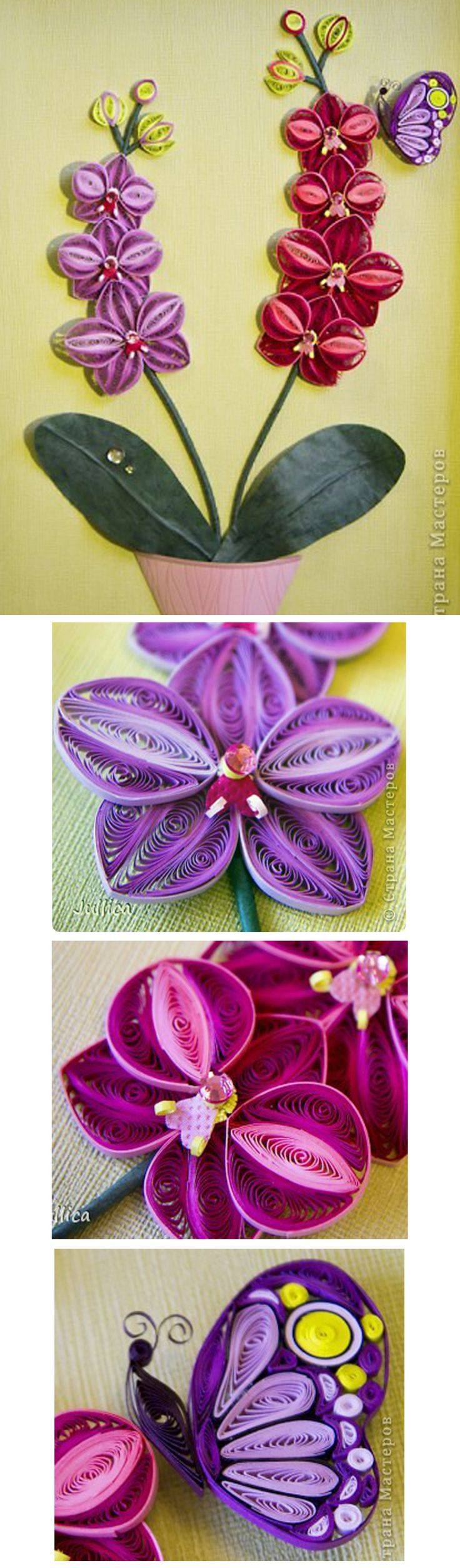 Quilled Orchids by Jullica