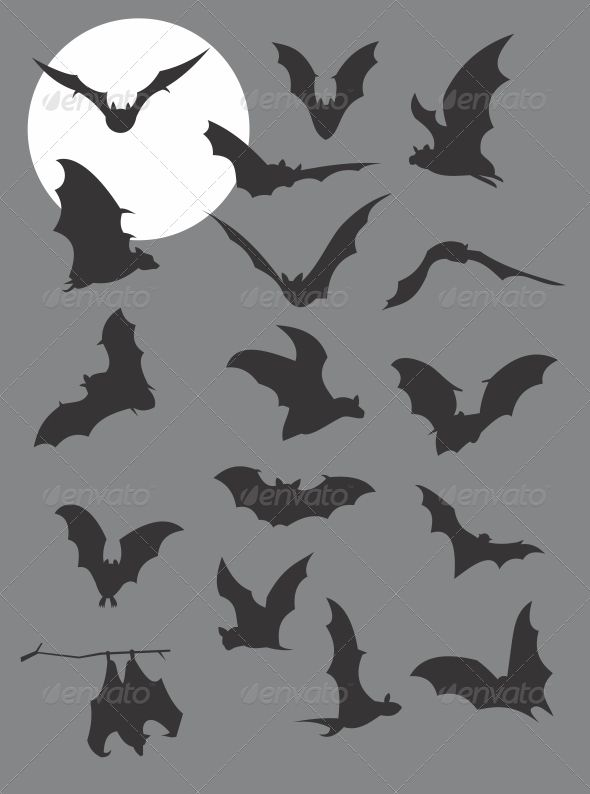 Flying Bats Silhouettes - Animals Characters photo booth backdrop