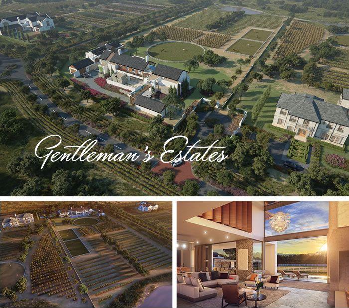 Gentleman's Estate - Val de Vie Property